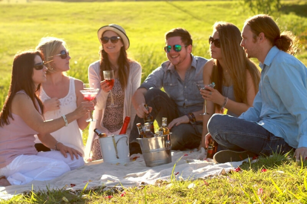 Best Picnic Spots in the Cape Winelands