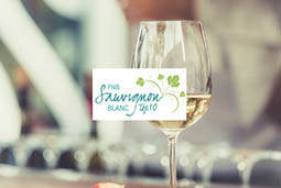 The 2016 FNB Sauvignon Blanc Top 10